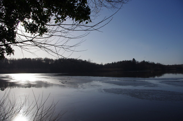 Hedgecourt Lake, Surrey - Pianist Surrey